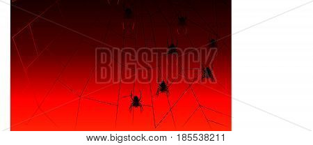 Illustration of halloween spiders dangling from a cobweb
