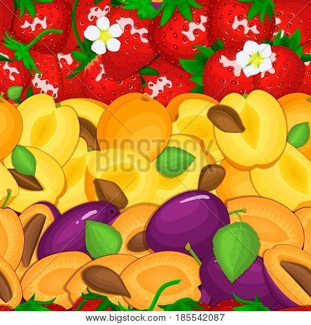Ripe juicy plum apricot strawberry seamless background. Vector card illustration. Closely spaced fresh fruits and berry whole, and slice. Seamless pattern for packaging design food, juce, detox, diet