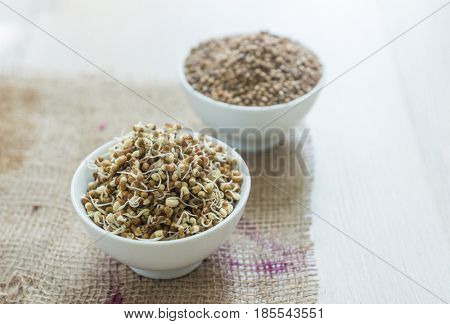Bowl of sprouted green moong or green gram along with raw moong grains. Sprouted legume is the most healthiest food and full of vitamins.