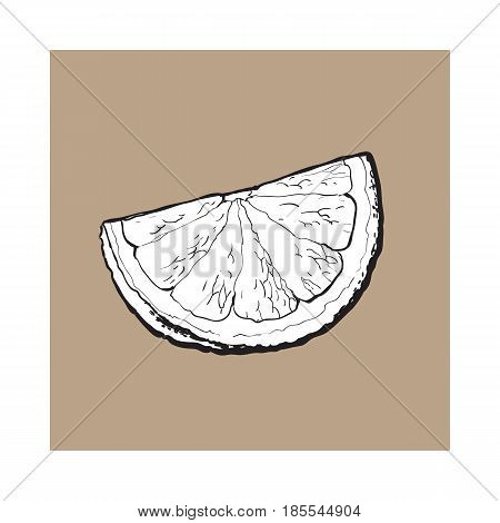 Quarter, segment, piece of ripe grapefruit, orange, hand drawn black and white sketch style vector illustration on brown background. Hand drawing of unpeeled grapefruit qurter, piece