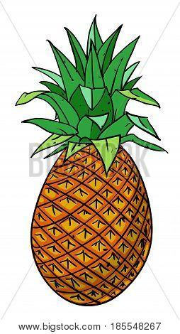 Cartoon image of pineapple. An artistic freehand picture.