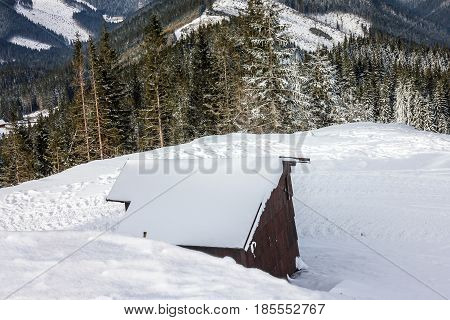 Mountain scenery - winter Tatry landscape forest, Slovakia