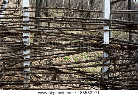 Fence woven out of dry twigs. Close-up. Horizontal rectangular photo.