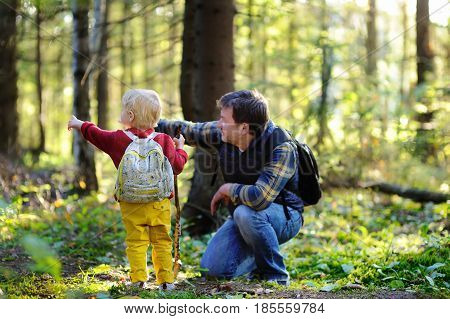 Father And His Little Son Walking During The Hiking Activities In Forest At Sunset