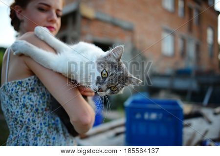 Young woman holding Scottish straight shorthair cat.