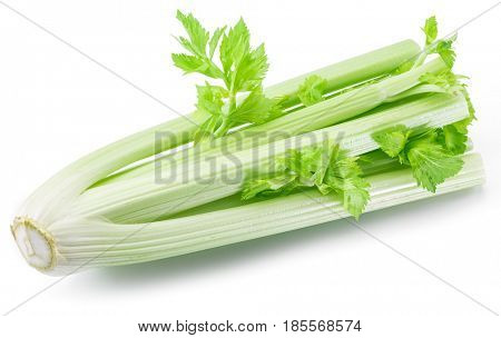 Fresh green leaf stalks of celery. Isolated on a white background.