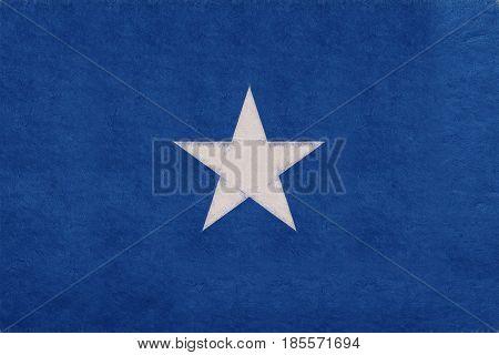 Flag Of Somalia Grunge.