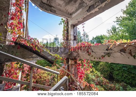 Building of former factory in Pripyat desolate city in Chernobyl Exclusion Zone Ukraine