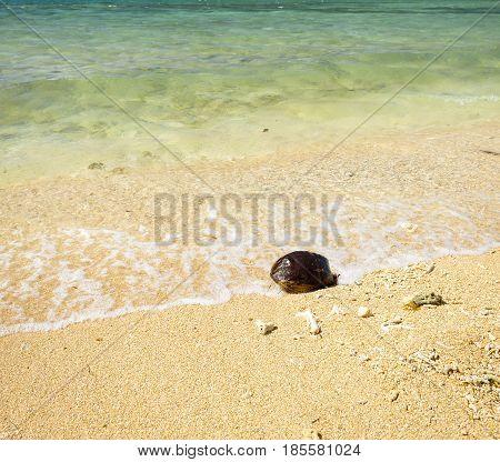 Hot Summer Beach