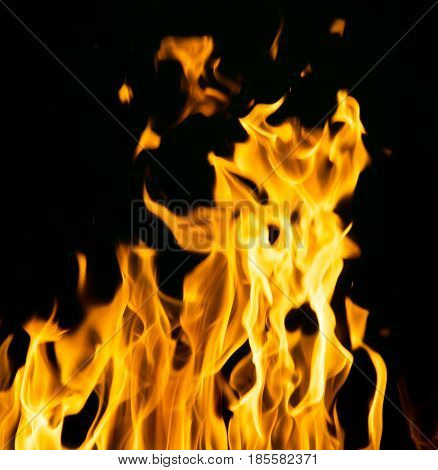 abstract background of fire flames on a black background .