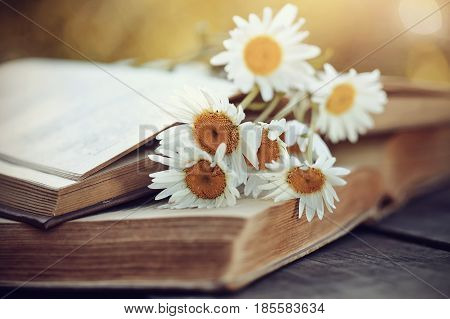 A bouquet of camomiles rested on an old book.