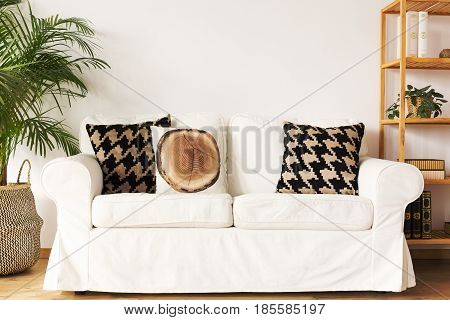 Living room with white couch decorative pillows bookcase and plant