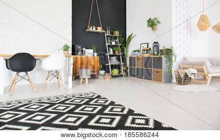 Black and white home interior with chairs table commode sofa