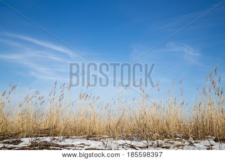 beautiful sky background in winter steppe . Photo in nature