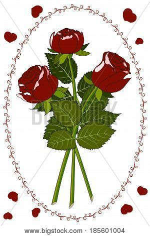Postcard three red roses with leaves, vignette and petals, Isolated on white background, vector illustration