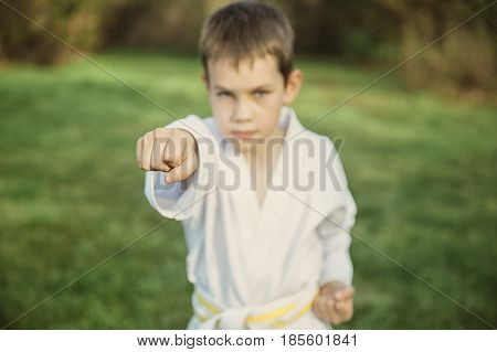 boy in a fighting stance taekwondo. Boy in kimono closeup, blurred background for concept