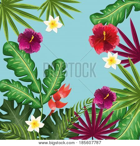 cute framework with exotic flowers plants, vector illustration design