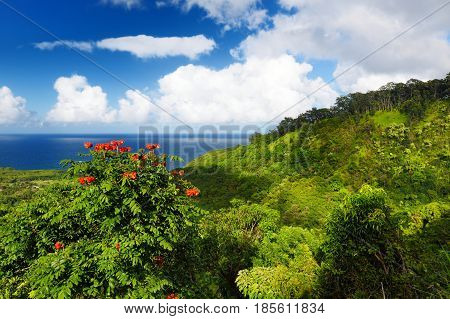 Beautiful Views Of Maui North Coast, Taken From Famous Winding Road To Hana