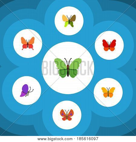 Flat Moth Set Of Summer Insect, Butterfly, Danaus Plexippus And Other Vector Objects. Also Includes Milkweed, Butterfly, Moth Elements.