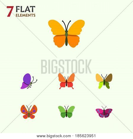 Flat Moth Set Of Moth, Summer Insect, Archippus And Other Vector Objects. Also Includes Moth, Milkweed, Monarch Elements.