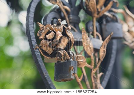 Forged roses from metal and the castle left in love with a closeup
