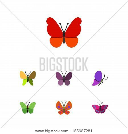 Flat Monarch Set Of Violet Wing, Monarch, Moth And Other Vector Objects. Also Includes Monarch, Summer, Insect Elements.