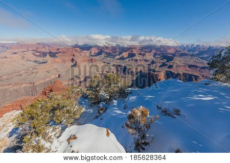 a snow covered landscape of the grand canyon south rim in winter