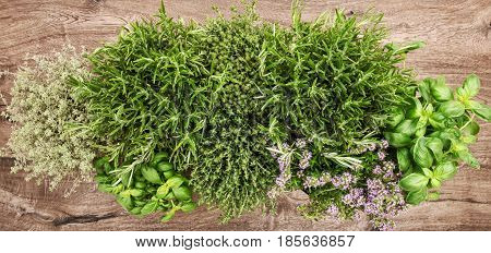 Fresh herbs on wooden background. Basil rosemary thyme savory. Top view