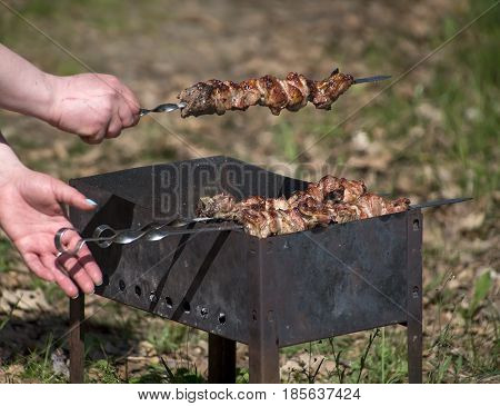 Grilled meat a coals and a logs