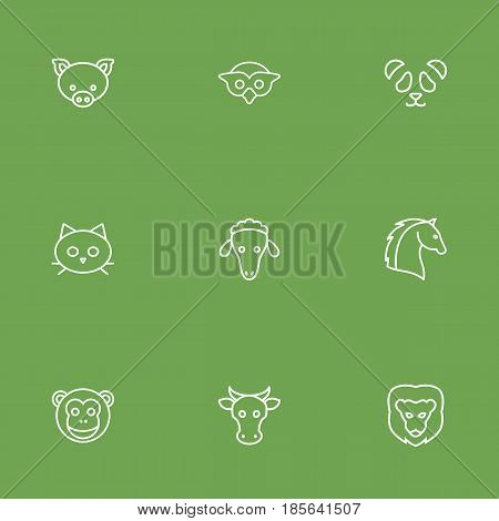 Set Of 9 Brute Outline Icons Set.Collection Of Cat, Cow, Feline Bear And Other Elements.