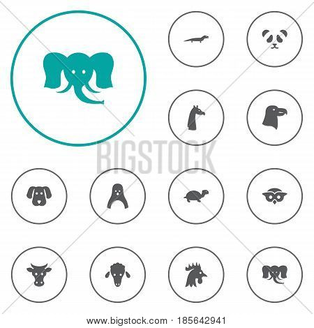 Set Of 12 Brute Icons Set.Collection Of Night Fowl, Bear, Diver And Other Elements.
