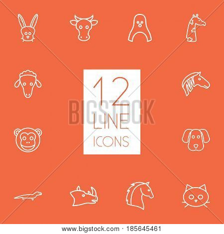 Set Of 12 Brute Outline Icons Set.Collection Of Horse, Sheep, Monkey And Other Elements.