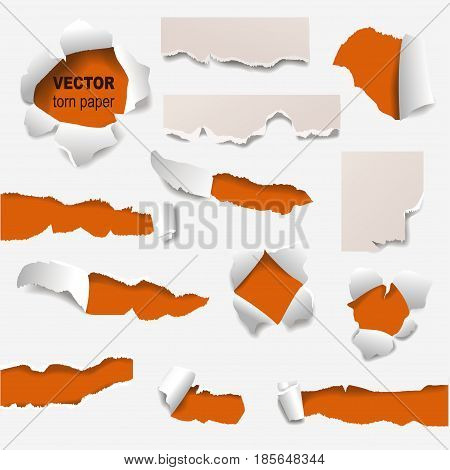 Collection of torn edges of a hole paper vector illustration. Empty element rip frame concept grunge page template. Torn edge ripped damage opening banner background.
