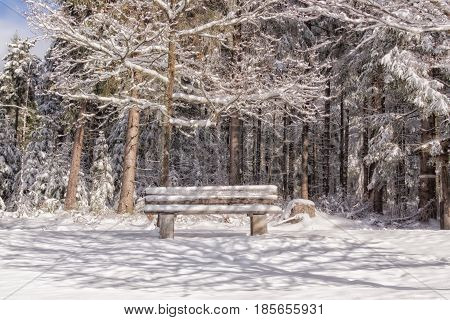 Wooden bench in a winter landscape with sun and shadow