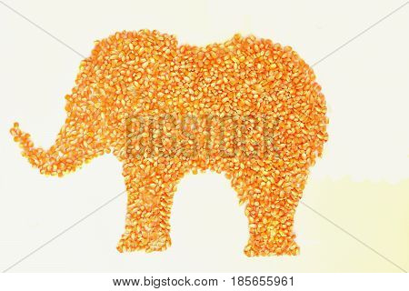 Dried corn kernels Lay an elephant on a white background