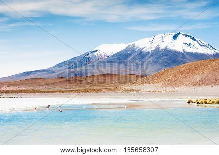 High-altitude Lagoon On The Plateau Altiplano, Bolivia