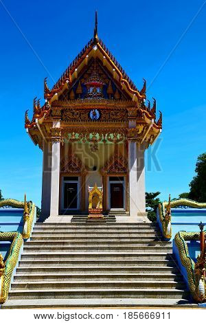 Kho Samui Bangkok  Thailand Incision Dragon