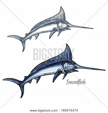 Marlin sketch vector fish icon. Isolated ocean sailfish fish species with dorsal spear. Isolated symbol for seafood restaurant sign or emblem, fishing club or fishery market