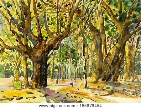 Painting art watercolor landscape original colorful of tree garden and emotion in green leaves background