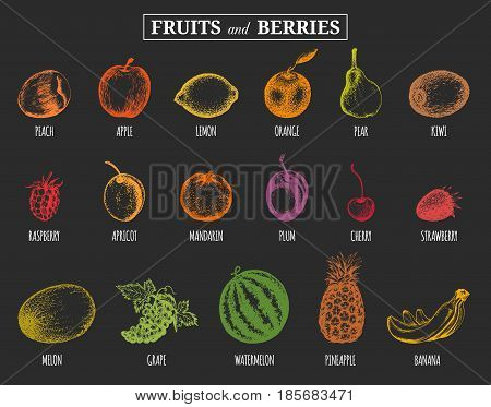 Vector illustration fruits and berries. Hand drawn greengrocery set for organic drink cards, farm eco products tags Peach, Lemon, Orange, Apple etc.