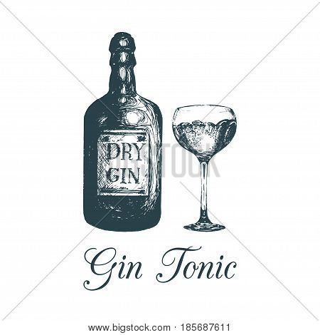 Hand sketched gin bottle and glass. Alcoholic drink drawing. Vector illustration of traditional cocktail for cafe, bar, restaurant menu.