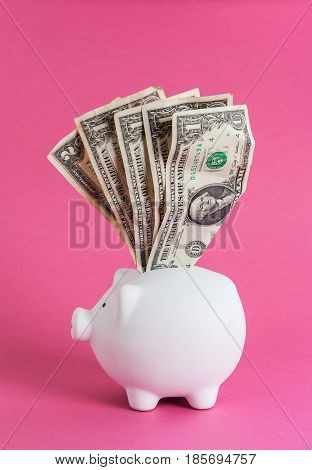 Huge savings in the piggy bank overflowing with cash