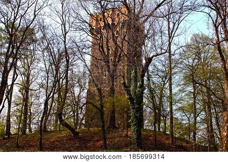 Hidden medieval tower behind trees on a hill
