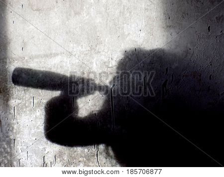 Shadow of yfoung alcohollic women with alcohol bottle, alcohol addiction