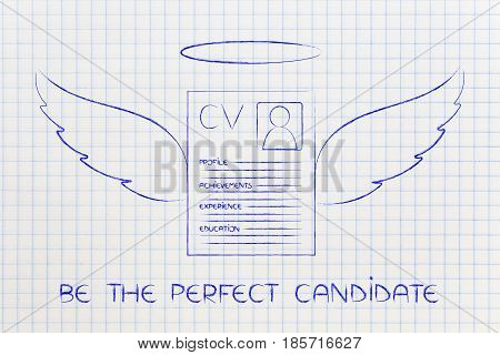 Funny Resume With Angel Wings, Be The Perfect Candidate Text