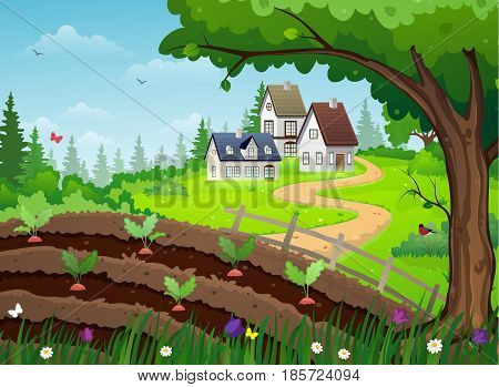 Rural landscape with houses trees and a vegetable garden