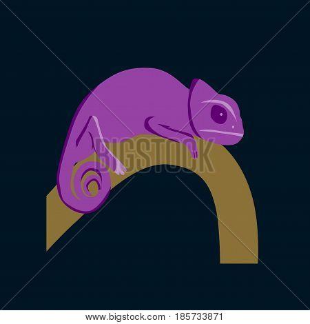 Vector illustration in flat style chameleon nature
