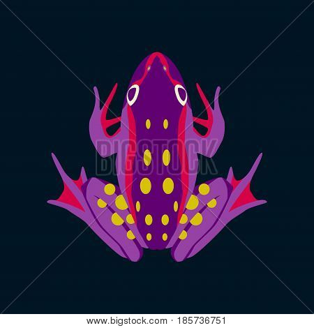 Vector illustration in flat style toad nature