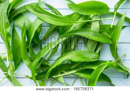 Ramson or wild garlic leaves on blue kitchen table. Top view.