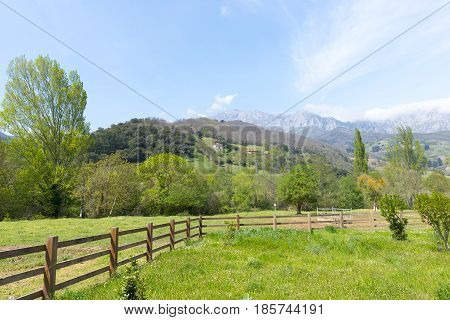 Strolling Around Fuente De In The Peaks Of Europe